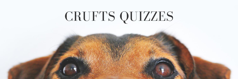 Crufts Quizzes