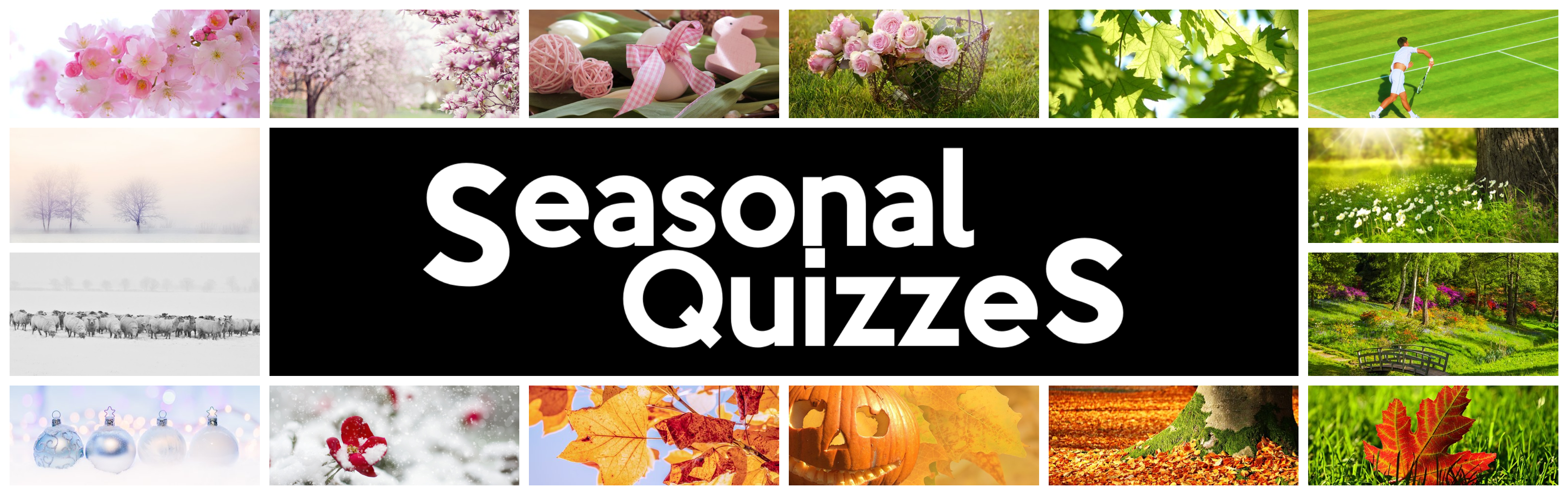 Seasonal Quizzes