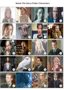 Harry Potter Characters Picture Quiz - PR1969