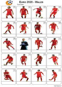 Euro 2020 Wales Team - PIcture Quiz PR2286