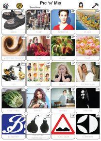 Pic 'n' Mix Picture Quiz - PR2310