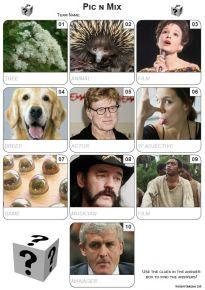 Pic 'n' Mix Mini Picture Quiz - Z3452