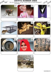 Cryptic Number Ones Mini Picture Quiz - Z3471