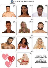 Love Island - Mini Picture Quiz Z3663